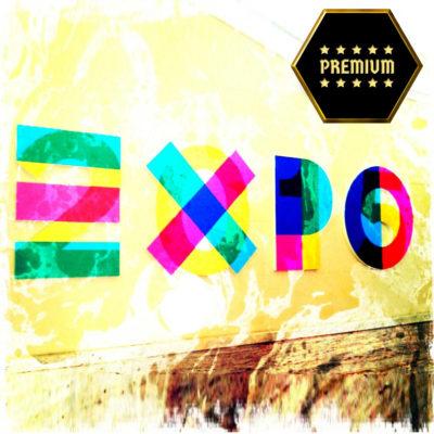 EXPO Premium-2015 icon